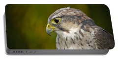 Thoughtful Kestrel Portable Battery Charger