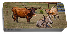 Three Amigos Portable Battery Charger by Doug Long
