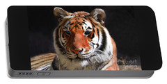 Tiger Blue Eyes Portable Battery Charger by Rebecca Margraf