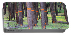 Timber Marking Portable Battery Charger by Pamela Walrath