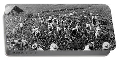 Tobacco Field In Montpelier - Jamaica - C 1900 Portable Battery Charger