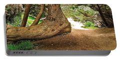 Portable Battery Charger featuring the photograph Tree And Trail by Bill Owen