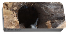 Tufted Titmouse In A Log Portable Battery Charger