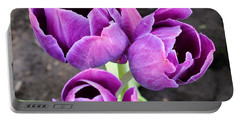 Tulips Queen Of The Night Portable Battery Charger