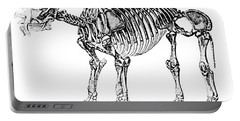 Uintatherium,  Aka Dinoceras, Cenozoic Portable Battery Charger