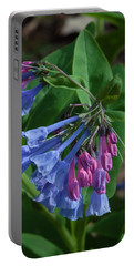 Virginia Bluebells Portable Battery Charger by Daniel Reed