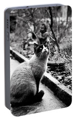 Portable Battery Charger featuring the photograph Waiting by Laura Melis