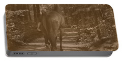 Portable Battery Charger featuring the photograph Walk Down Memory Lane by Davandra Cribbie