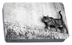 Portable Battery Charger featuring the photograph Walking On The Wall by Laura Melis