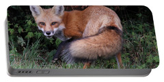 Wary Fox Portable Battery Charger