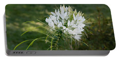 White Cleome Portable Battery Charger