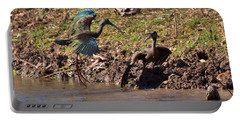 White-faced Ibis Mating Behavior In Early Spring Portable Battery Charger
