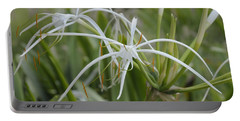 Portable Battery Charger featuring the photograph White Spider Orchid by Cindy Lee Longhini