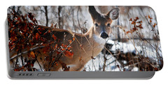 Whitetail Deer In Snow Portable Battery Charger by Nava Thompson