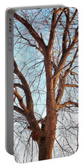 Portable Battery Charger featuring the photograph Winter Light by Chalet Roome-Rigdon