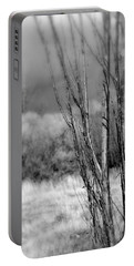 Portable Battery Charger featuring the photograph Winters Branch by Kathleen Grace