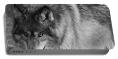 Wolf Stare Portable Battery Charger