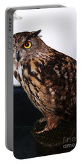 Yellow-eyed Owl Side Portable Battery Charger