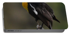 Yellow-headed Blackbird Portable Battery Charger
