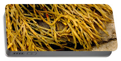 Portable Battery Charger featuring the photograph Yellow Kelp by Brent L Ander