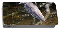 Yelow-crowned Night Heron 1 Portable Battery Charger by Joe Faherty