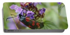 Burnet Moth Portable Battery Charger