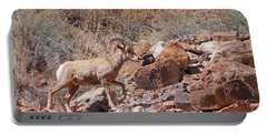 Escalante Canyon Desert Bighorn Sheep  Portable Battery Charger