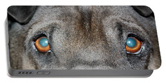 Gandalfs Eyes Portable Battery Charger