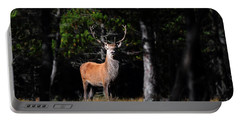 Portable Battery Charger featuring the photograph  Stag In The Forest by Gavin Macrae