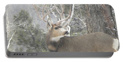 Buck Front Yard Divide Co Portable Battery Charger