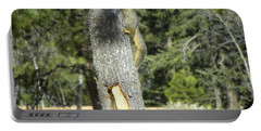 Squirrel Home Divide Co Portable Battery Charger