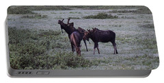 Moose Cameron Pass Co Portable Battery Charger