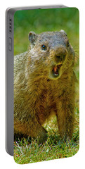 A Hungry Fellow  Portable Battery Charger by Paul W Faust - Impressions of Light