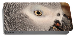 Portable Battery Charger featuring the photograph African Grey Parrot by Debbie Stahre