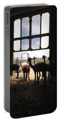 Alpaca  Portable Battery Charger