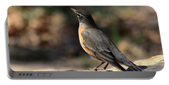 American Robin On Rock Portable Battery Charger