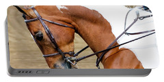Arabian Horse Show Portable Battery Charger