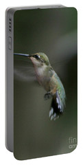 Portable Battery Charger featuring the photograph At Dawn by Barbara S Nickerson