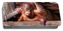 Baby Orangutan Portable Battery Charger by Stephanie Hayes