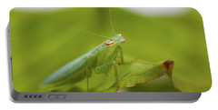 Portable Battery Charger featuring the photograph Baby Praymantes 6661 by Kevin Chippindall