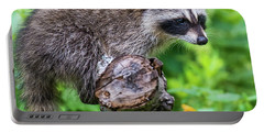 Portable Battery Charger featuring the photograph Baby Racoon by Paul Freidlund