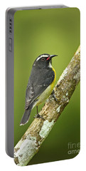 Bananaquit Portable Battery Charger