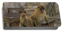 Portable Battery Charger featuring the photograph Barbary Macaque by Tony Murtagh