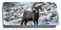 Bighorn7 Portable Battery Charger
