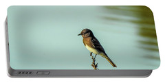 Black Phoebe Portable Battery Charger