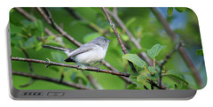 Blue-gray Gnatcatcher Portable Battery Charger by Gary Hall