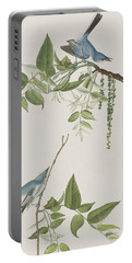 Blue Grey Flycatcher Portable Battery Charger
