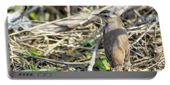 Portable Battery Charger featuring the photograph Bluethroat by Pravine Chester