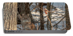 Portable Battery Charger featuring the photograph Bobcat by Brenda Jacobs