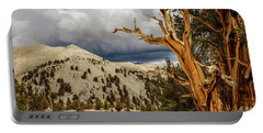 Bristlecone Pine Tree 7 Portable Battery Charger